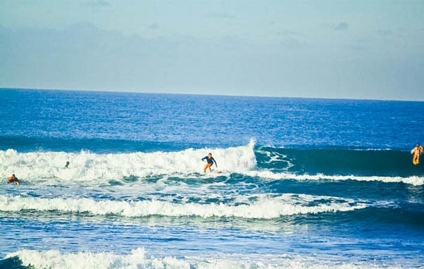 Level Two - bali surf lessons
